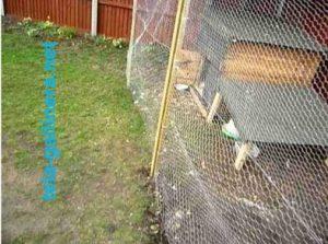 Con la tela gallinera usted podrá tener la mejor protección para sus corrales de aves